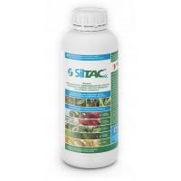 SillTAC (фасовка 10мл)